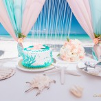 caribbean-wedding-ru-21