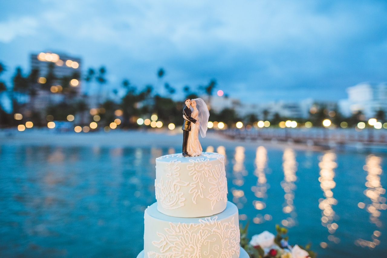 Caribbean Widding (38)